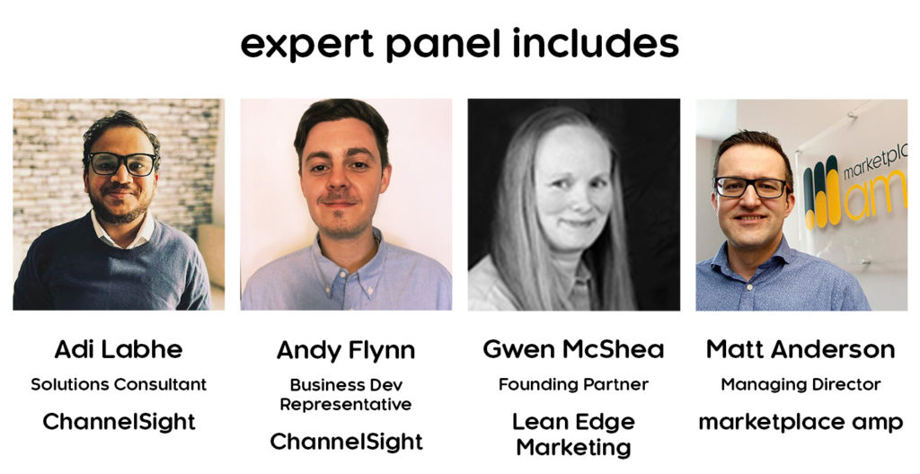 ChannelSight Webinar - expert panel